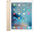 Apple iPad pro 12.9inch wifi + 4G 256Gb Gold