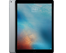 Apple iPad pro 12.9inch wifi + 4G 256Gb Gray