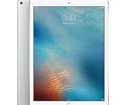 Apple iPad pro 12.9inch wifi + 4G 64Gb Silver